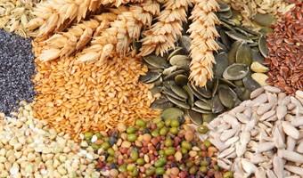 The Great Grain Debate