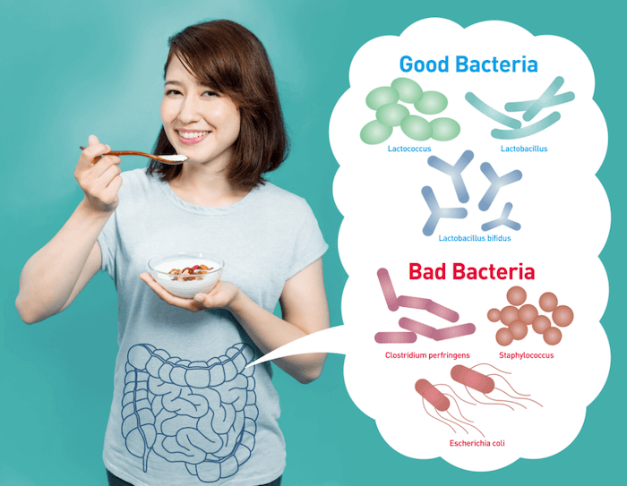 woman eating yogurt bowl on teal background with cartoon gut showing good bacteria and bad bacteria